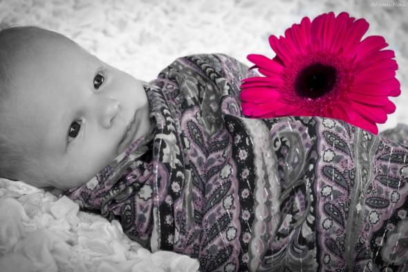 Újszülött fotózáson Nóriéknál