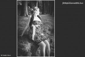 Collage_FP_JZS_211