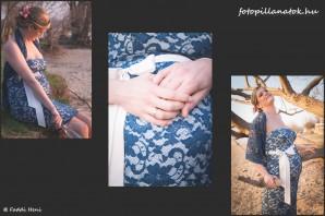 Collage_FP_JZS_231